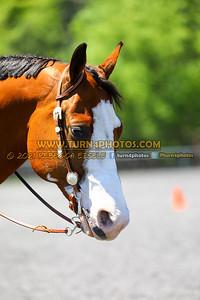 western horsemanship june 20--105