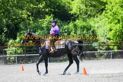 western horsemanship june 20--12