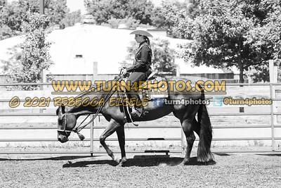 western pleasure  june 20--19