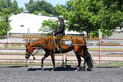 western pleasure  june 20--18