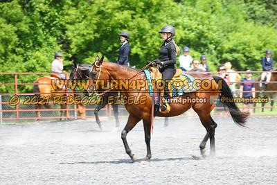beginner WTJ equitation  july 25--16