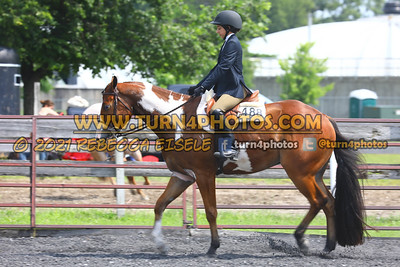 beginner WTJ equitation  july 25--10