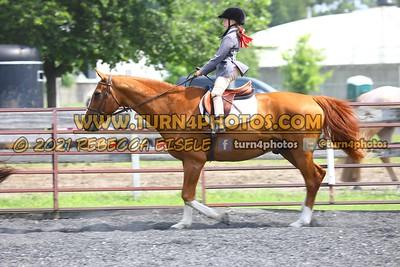 beginner WTJ equitation  july 25--15