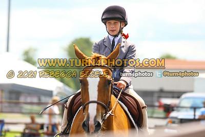 beginner WTJ equitation  july 25--22