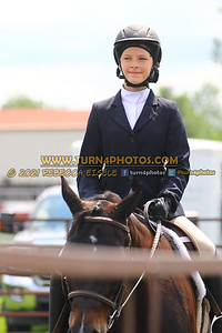 beginner WTJ equitation  july 25--24