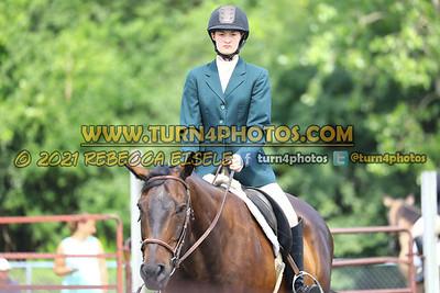 beginner WTJ equitation  july 25--12