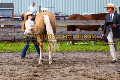 JR 12under showmanship july 25--13