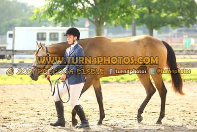 jr horse Halter  july 25--5