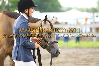 jr horse Halter  july 25--7