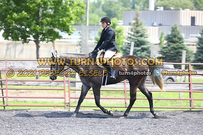 open hunter saddle stakes  july 25--13