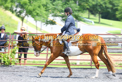 open hunter saddle stakes  july 25--21