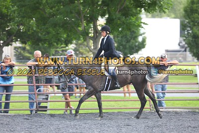 open hunter saddle stakes  july 25--22