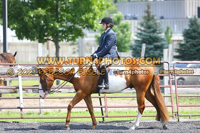 open hunter saddle stakes  july 25--25