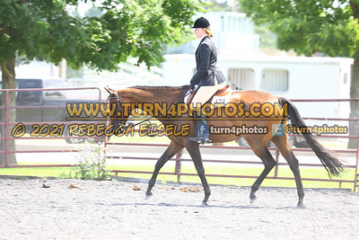 open hunter saddle stakes  july 25--17