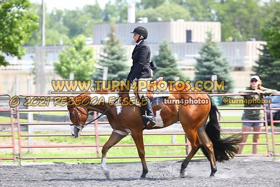 open hunter saddle stakes  july 25--12