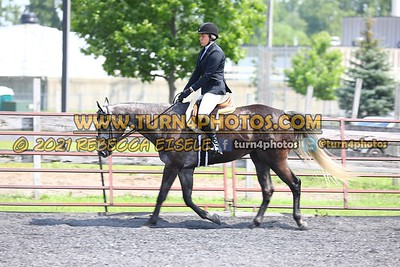 open hunter saddle stakes  july 25--14
