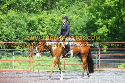 open hunter saddle stakes  july 25--26