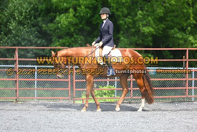 open hunter saddle stakes  july 25--18