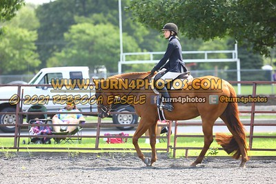 open hunter saddle stakes  july 25--24