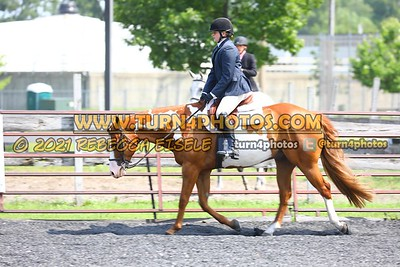 open hunter saddle stakes  july 25--16