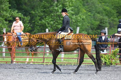 open hunter saddle stakes  july 25--19