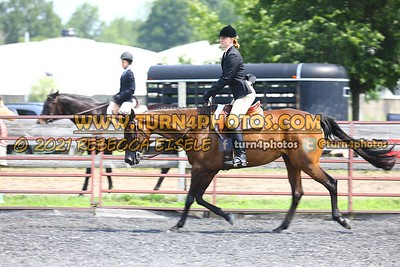open hunter saddle stakes  july 25--10