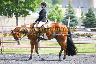 open hunter saddle stakes  july 25--20