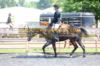 open hunter saddle stakes  july 25--2