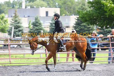 open hunter saddle stakes  july 25--11