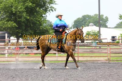 western equitation  july 25--17
