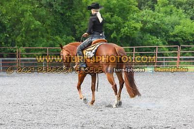 Horsemanship Western   july 25--27