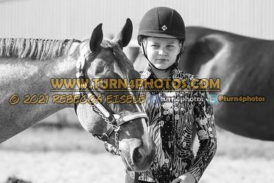 Jr Horse Halter 08-15 --15