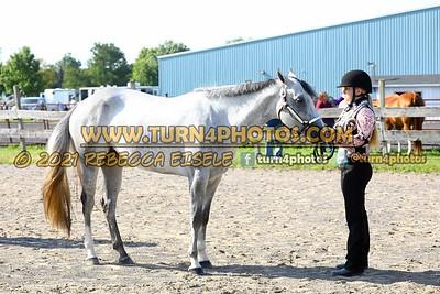 Jr Horse Halter 08-15 --12