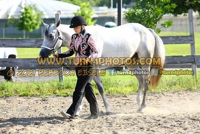 Jr Horse Halter 08-15 -