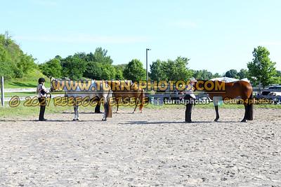 Jr Horse Halter 08-15 --19