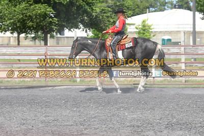 Open Ranch Rail 08-15 --13