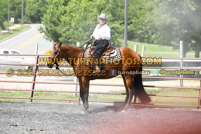 Open Western Pleasure 08-15 --17