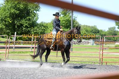 Western Pleasure 08-15 --23