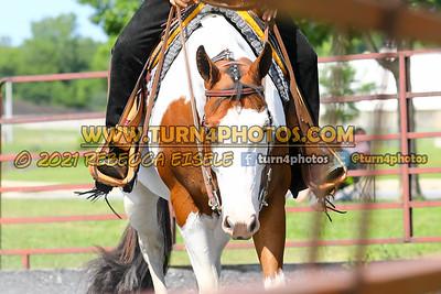 Western Pleasure 08-15 --25