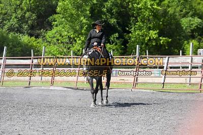 Western Pleasure 08-15 --10