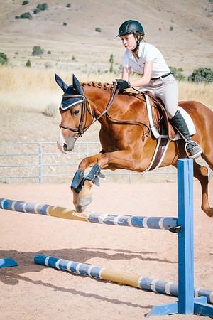 Equine Sports Portfolio