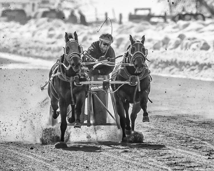 2013-02-16 Cutter Racing 135