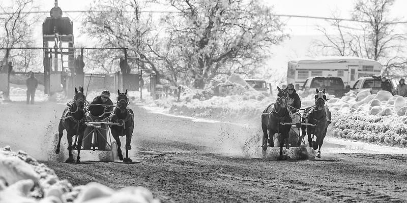 2013-02-16 Cutter Racing 110