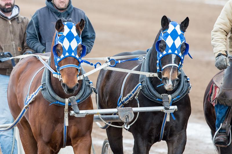 DSC_1799 Cutter Racing