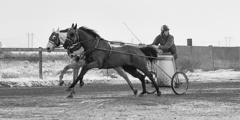 D4G_1848 Cutter Racing