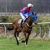Race 1 - Won by 9 Hurricane Vic - 8yo Bay Gelding owned by My Milson Robinson ridden by P. Armson trained by Simon Robinson