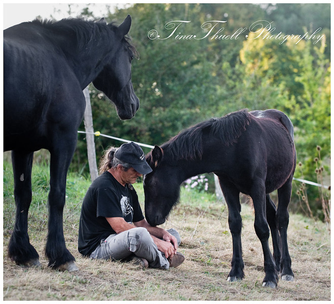 Here Jean Louise sits very still and a mare brings her colt who wants to just fold right into him.