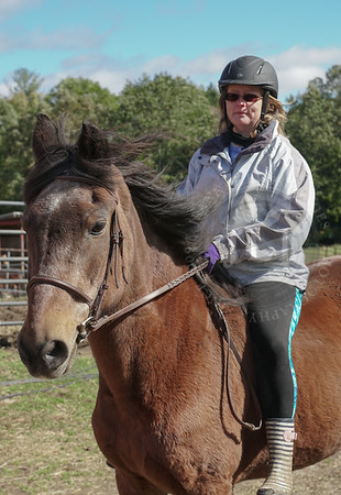 Saw Horse Farm, October 21 2018 TEMP