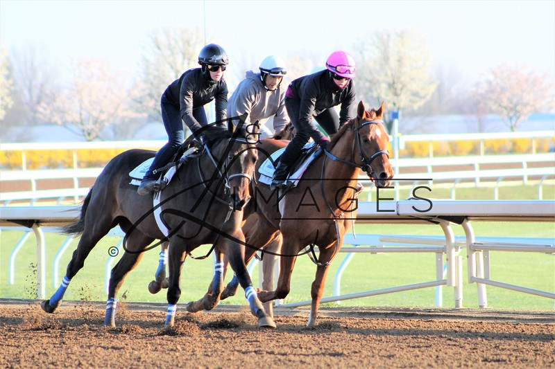 Morning  Warm-ups - Keeneland