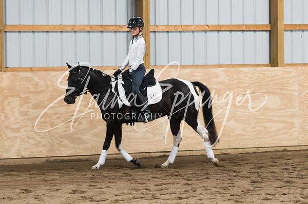 Lendon Gray Dressage Clinic 7/28/18